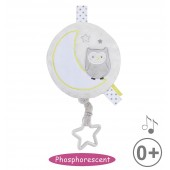 OWL PHOSPHORESCENT MUSICAL TOY